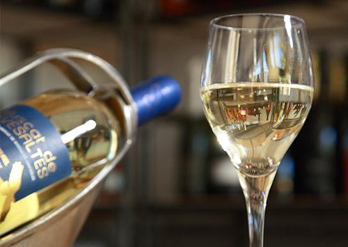 degustation vins Le Palmier